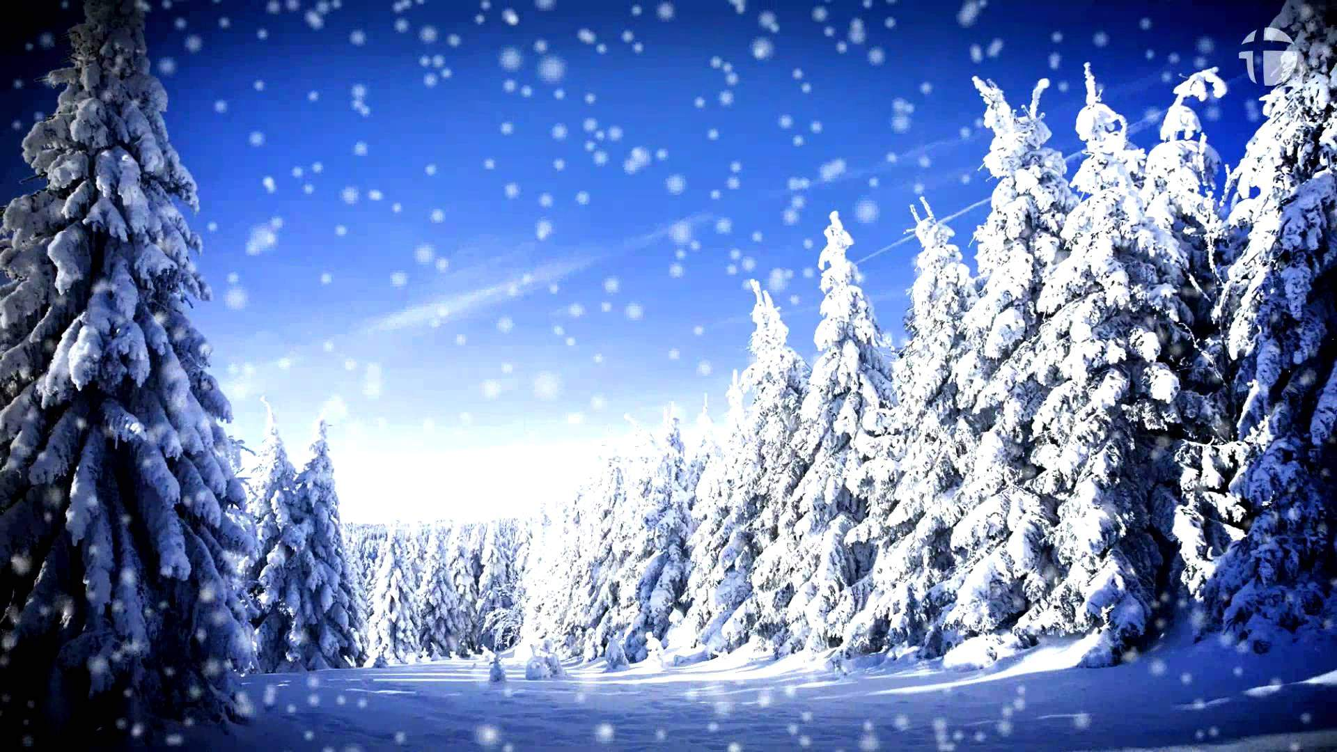 анимационные картинки для рабочего стола зима предварительной