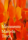 Torcato, Marcelo: Movimento